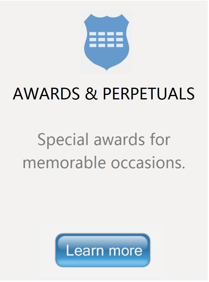 Perpetual Trophy Or Award